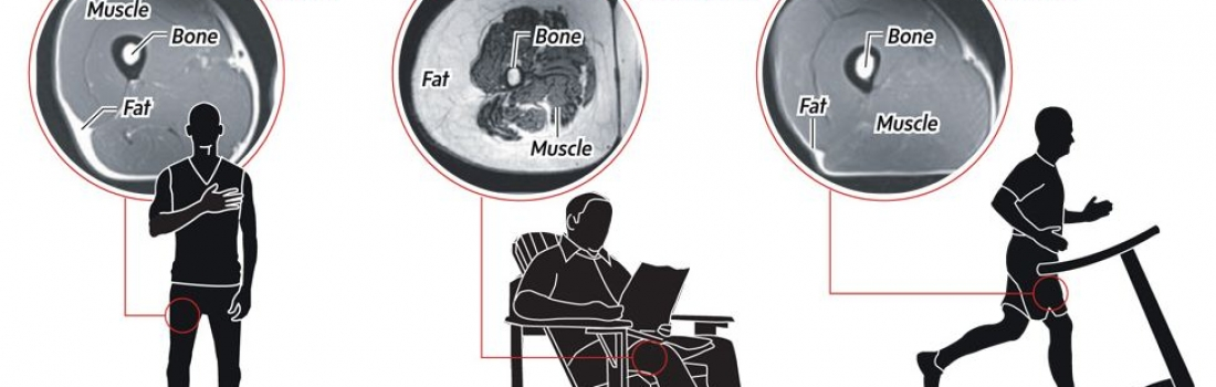 Most of us are sitting at work and to and from work more than any other posture…this is a health issue!